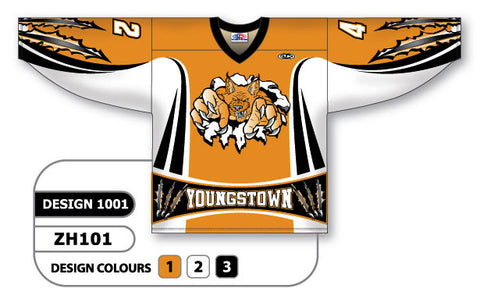 Custom Sublimated Hockey Jersey Design 1001