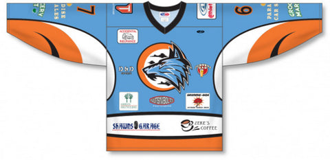 Custom Sublimated Hockey Jersey Design 1027