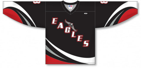 Custom Sublimated Hockey Jersey Design 1029