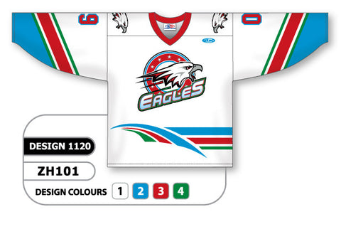 Custom Sublimated Hockey Jersey Design 1120