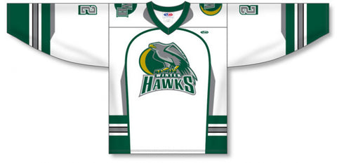 Custom Sublimated Hockey Jersey Design 1370