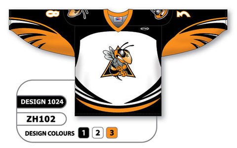 Custom Sublimated Hockey Jersey Design 1024
