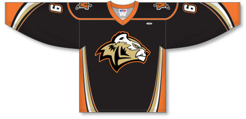 Custom Sublimated Hockey Jersey Design 1222
