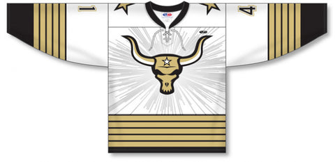 Custom Sublimated Hockey Jersey Design 1221