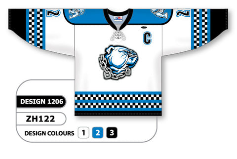 Custom Sublimated Hockey Jersey Design 1206