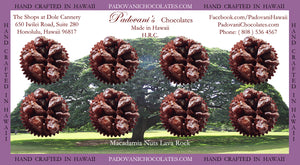 Hawaii's Exotic Flavors # 1Macadamia Nuts Lava Rock 8 Piece @