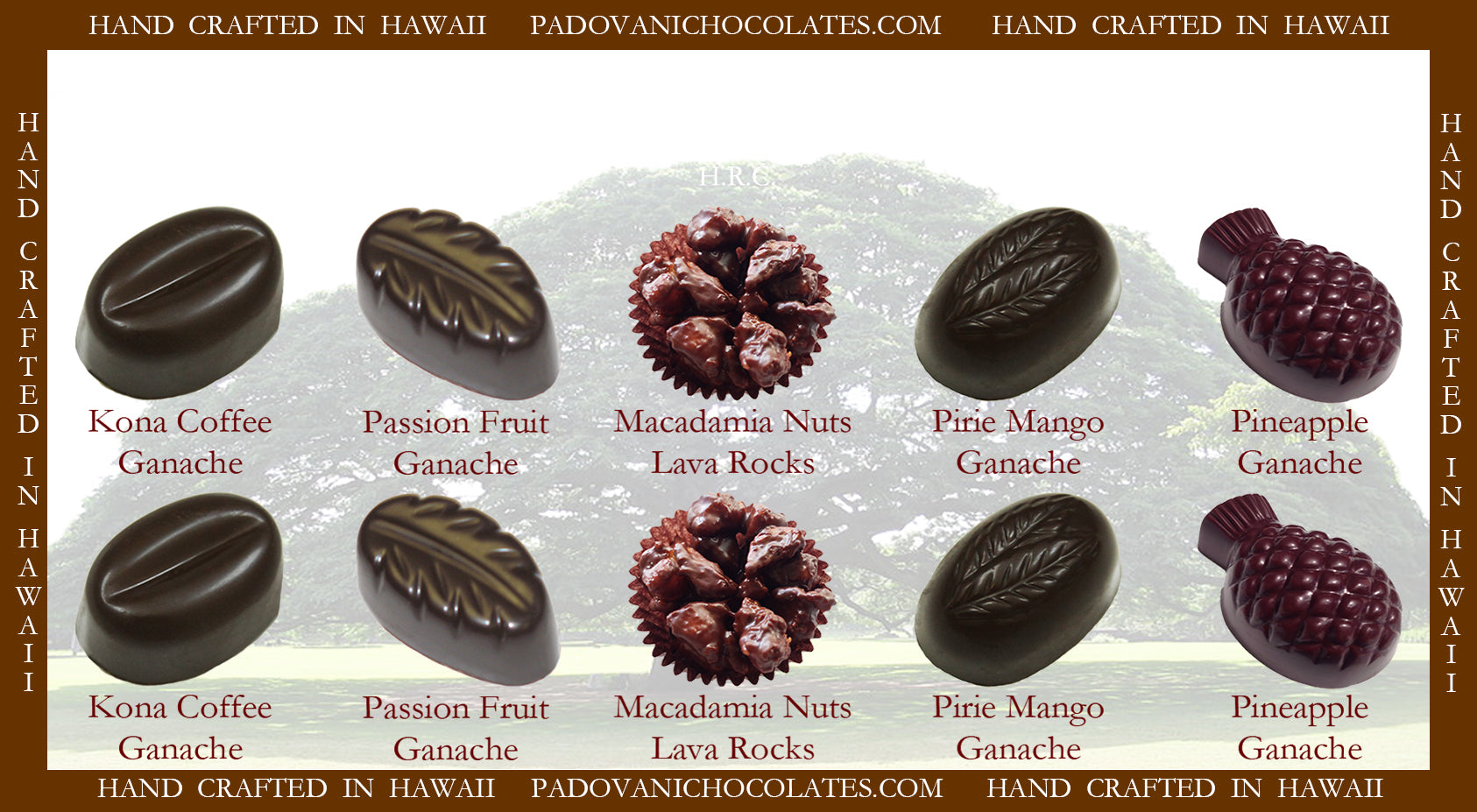 Hawaii's Exotic Flavors #2 10 Piece @