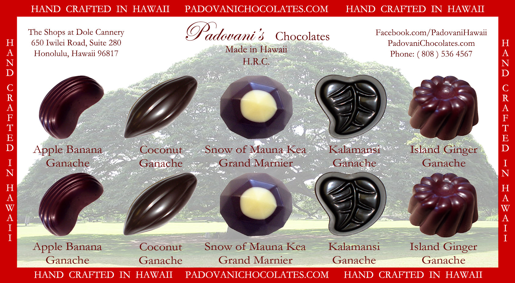 Hawaii's Exotic Flavors #4 10 Piece @