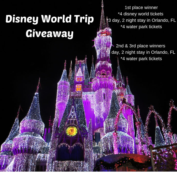 Disney World Family Vacation, March 17-20