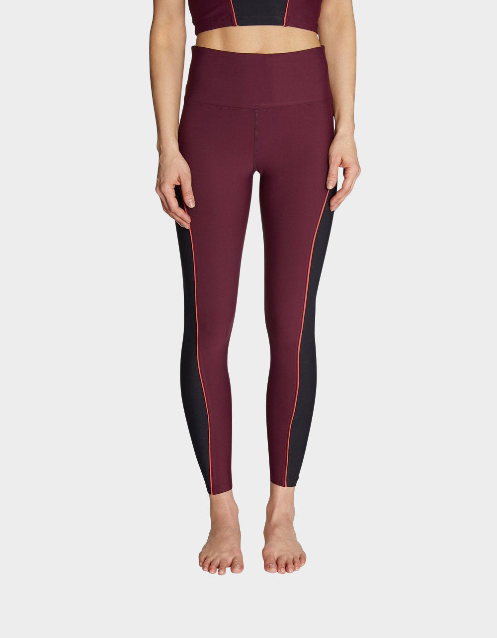 CONTRAST PIPED LEGGING WINE MULTI - APPAREL - Betsey Johnson