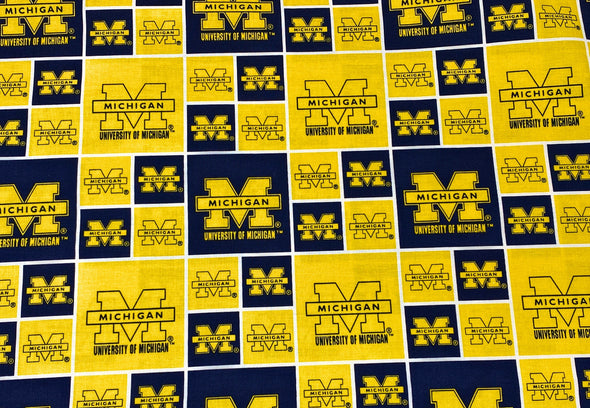 Michigan Wolverines Face Mask Nose Wire Filter Pocket - University of Michigan