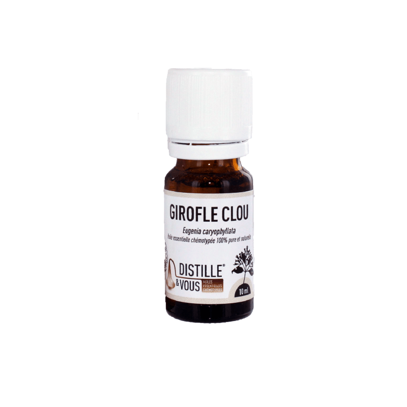 Girofle Clou - Huile essentielle