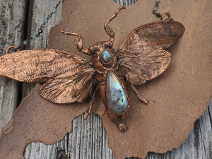Copper Electroformed Large Cicada - Moonstone and Labradorite - Minxes' Trinkets