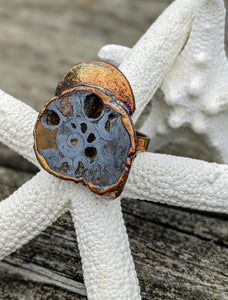 Size 12.5 Fossilized Ammonite Copper Electroformed Ring - Minxes' Trinkets