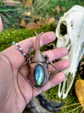 Load image into Gallery viewer, Electroformed Rhinoceras Beetle with Labradorite