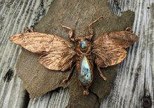 Load image into Gallery viewer, Copper Electroformed Large Cicada - Moonstone and Labradorite - Minxes' Trinkets