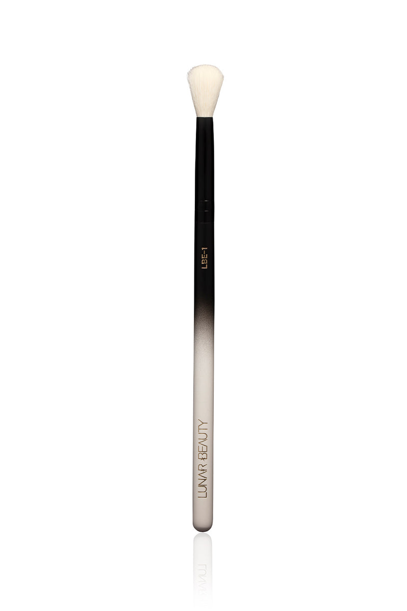LBE-1 Eye Brush