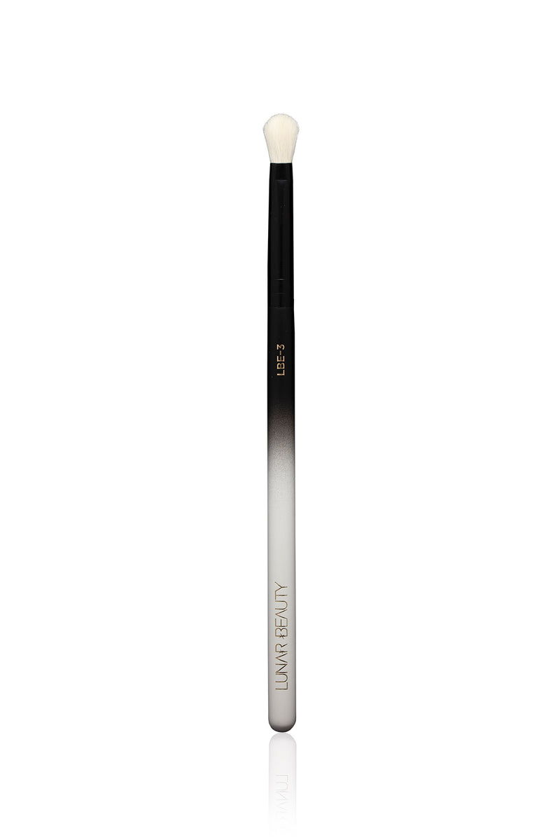 LBE-3 Eye Brush