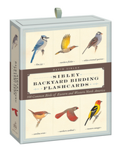 BACKYARD BIRDS FLASHCARDS