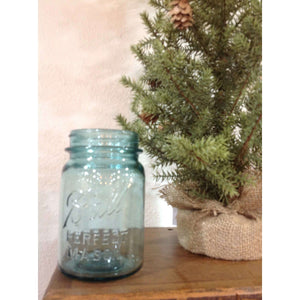 Vintage Blue Canning Jars - Little Prairie Girl