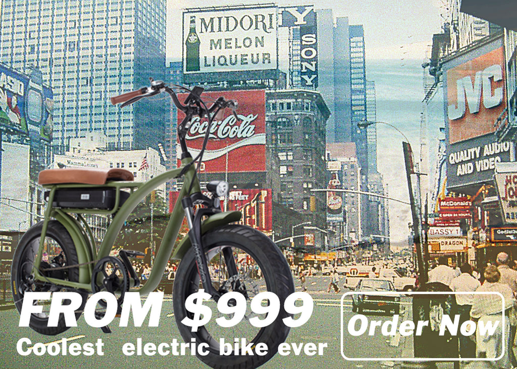 Fat Tire electric bike Twin Power Bike FHX-005
