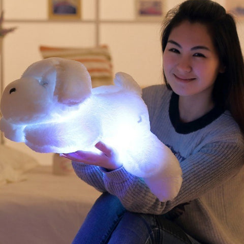 Image of Luminous LED Stuffed Dog