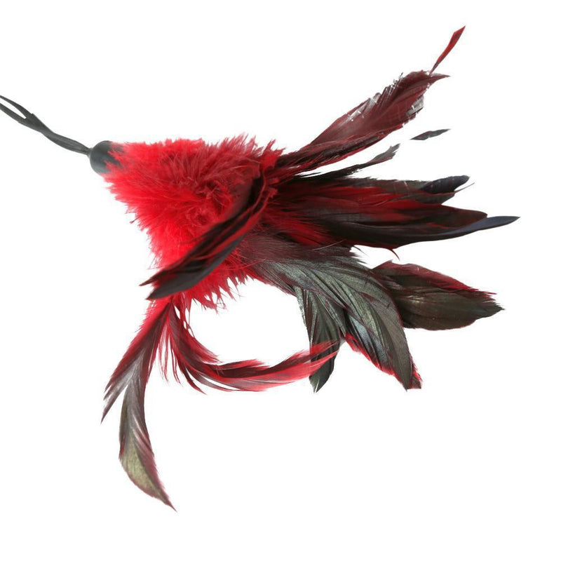 Sportsheets Pleasure Feather - Red - Kinkly Shop