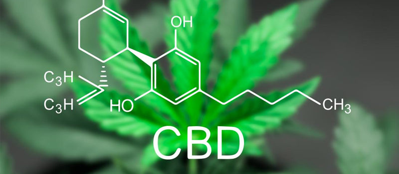 5 Possible Uses of CBD