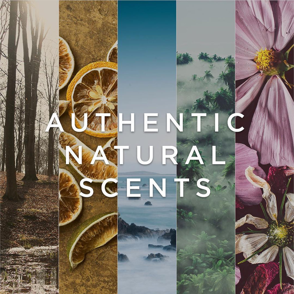 OUR SCENTS