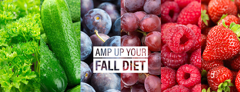 The Phy Life- Amp up your fall diet