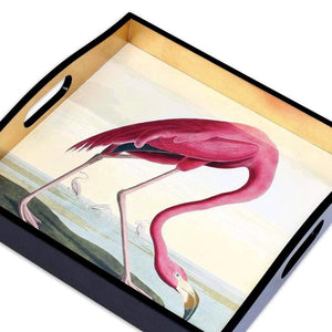 Audubon Birds Flamingo Decorative Tray