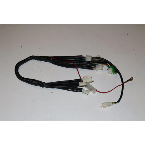 Blazer 110B Main Harness