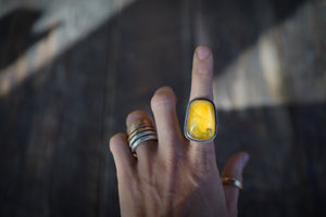 Honey Pot Ring. Genuine Baltic Amber. 6.75 Reclaimed sterling silver.
