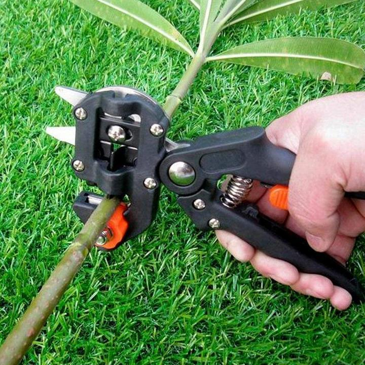 50% Off Professional Garden Grafting Tool - Get Grafting Tape For Free