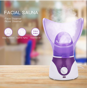 Face Spa Steamer
