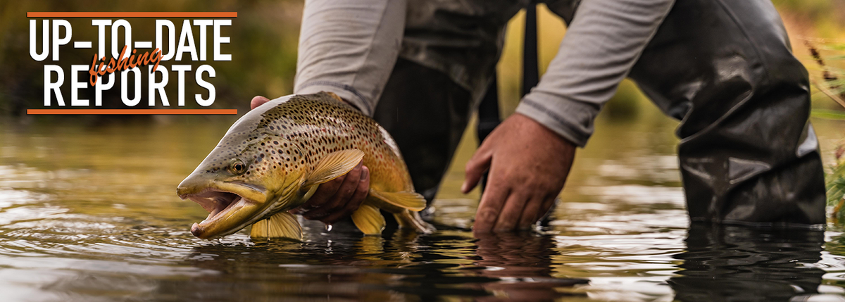 Trouts Fly Fishing | Denver's Premier Fly Shop & Outfitter