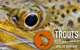Angler Rewards Program Enrollment Fee