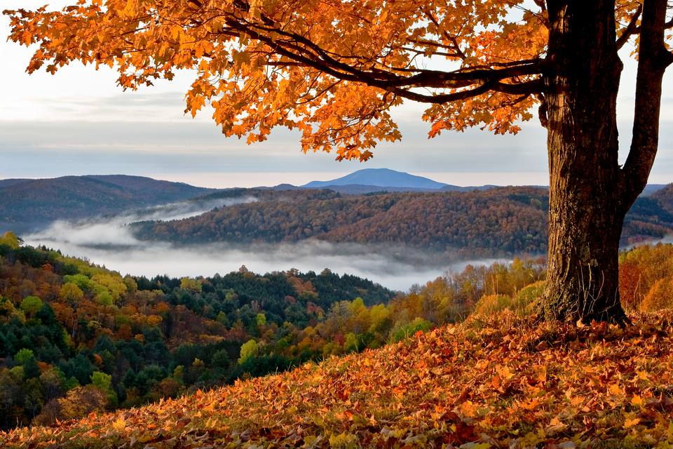 5 State Parks That Are Worth The Trip This Fall Season