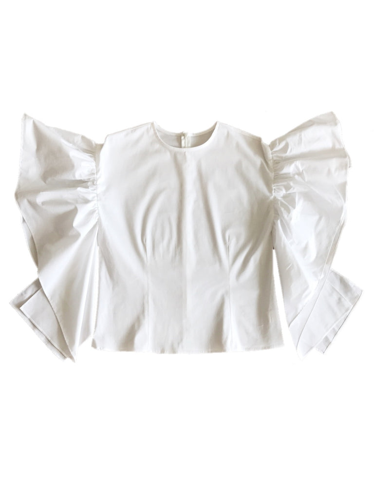Frill design blouse