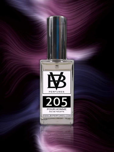 BV 205 - Similar to One Million - BV Perfumes
