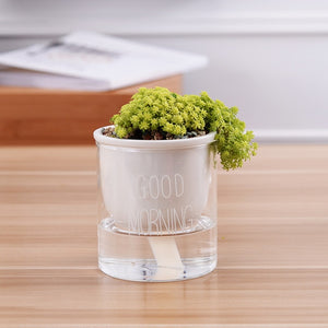Shuka - Automatic Watering Ceramic Planter Pot