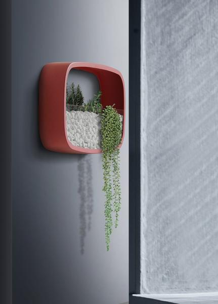Rounded Modern Wall Planters - Dreamly Decor