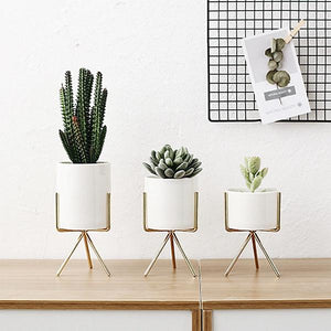 Sui - White Ceramic Planters - Luxury Modern Decor