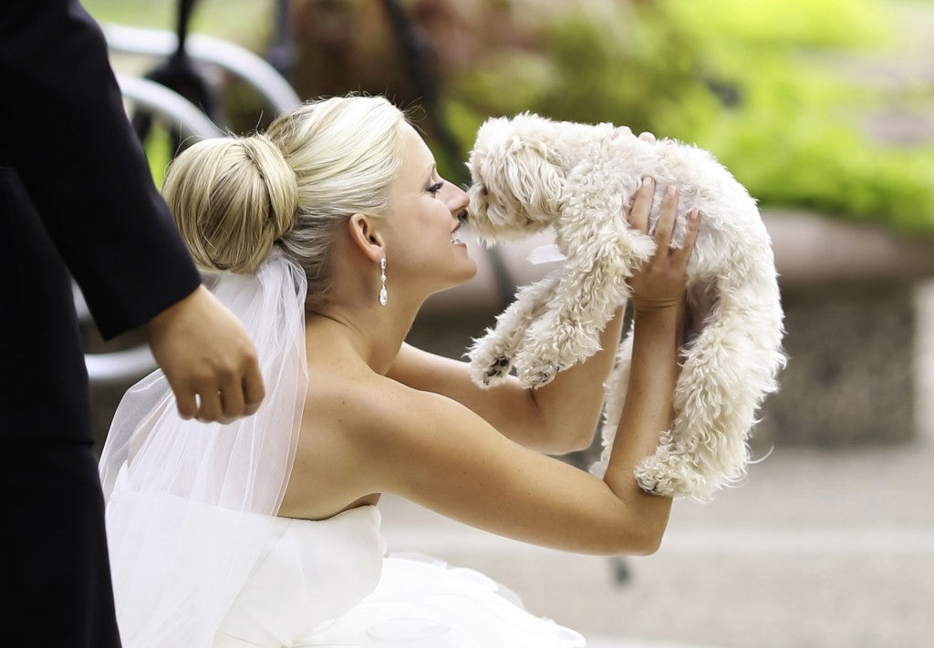 wedding planning for animal lovers