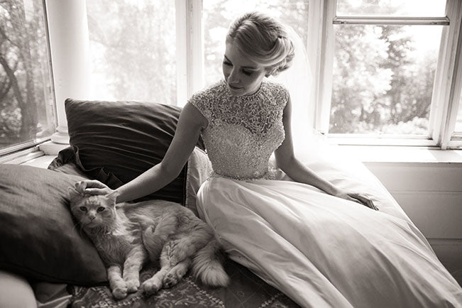 Bride and Cat Brian Bossany