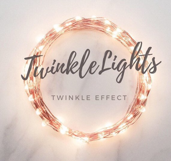 twinkle lights | 13 budget friendly wedding decorations