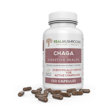 Organic Chaga Mushrooms