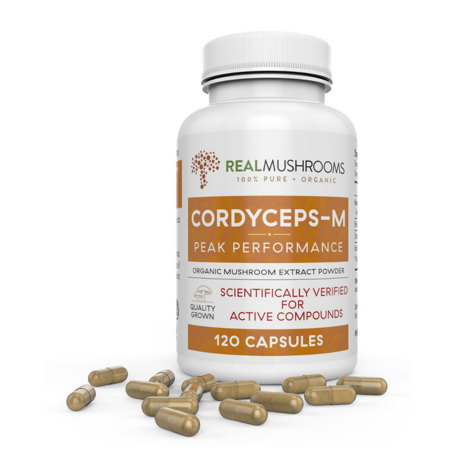 Organic Cordyceps Mushrooms