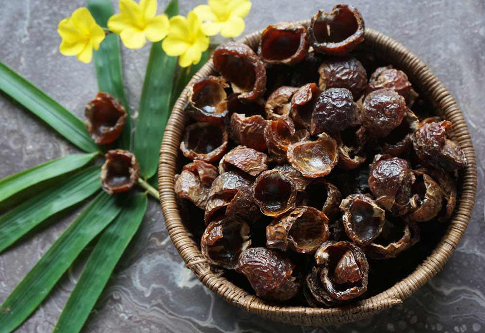 4 Amazing Uses of Soap Nuts Everyone Should Know