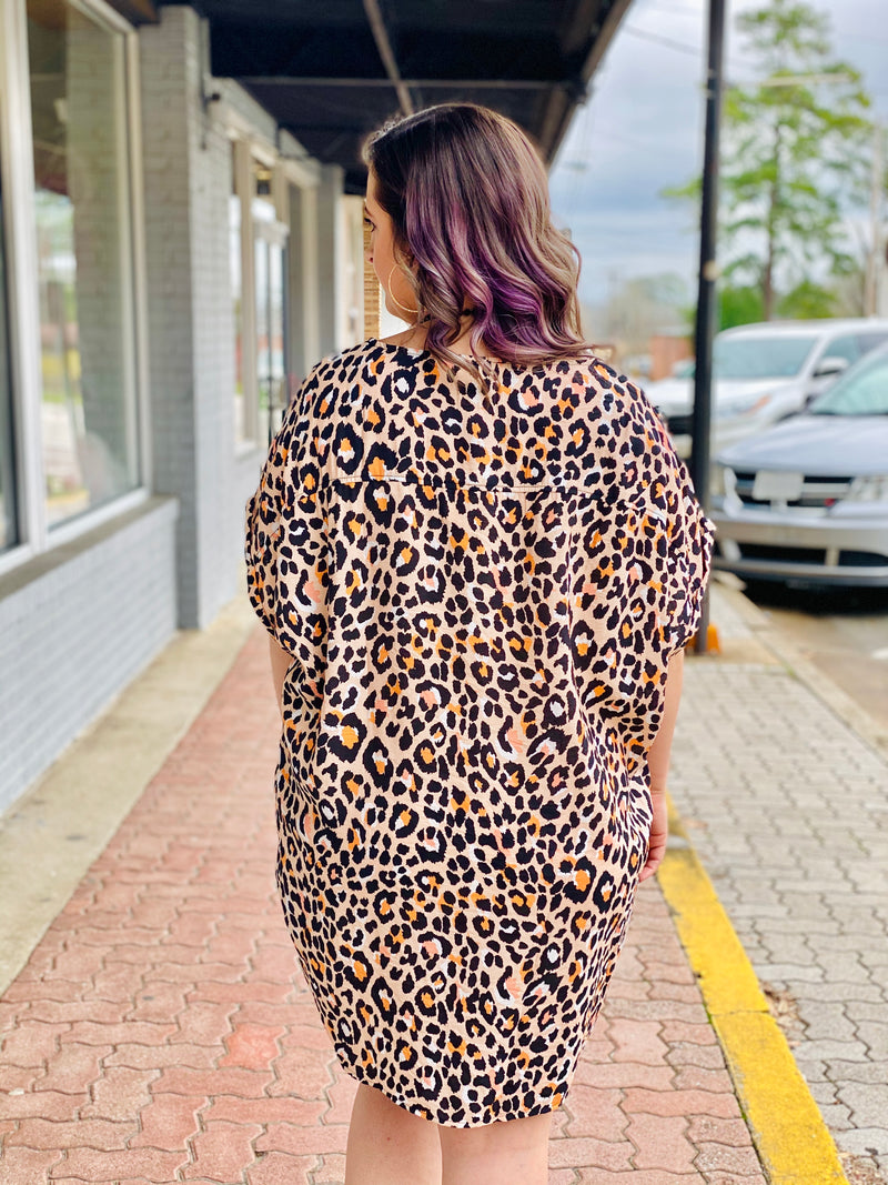 PROWL AROUND LEOPARD DRESS - CHICKEN ROW MARKET